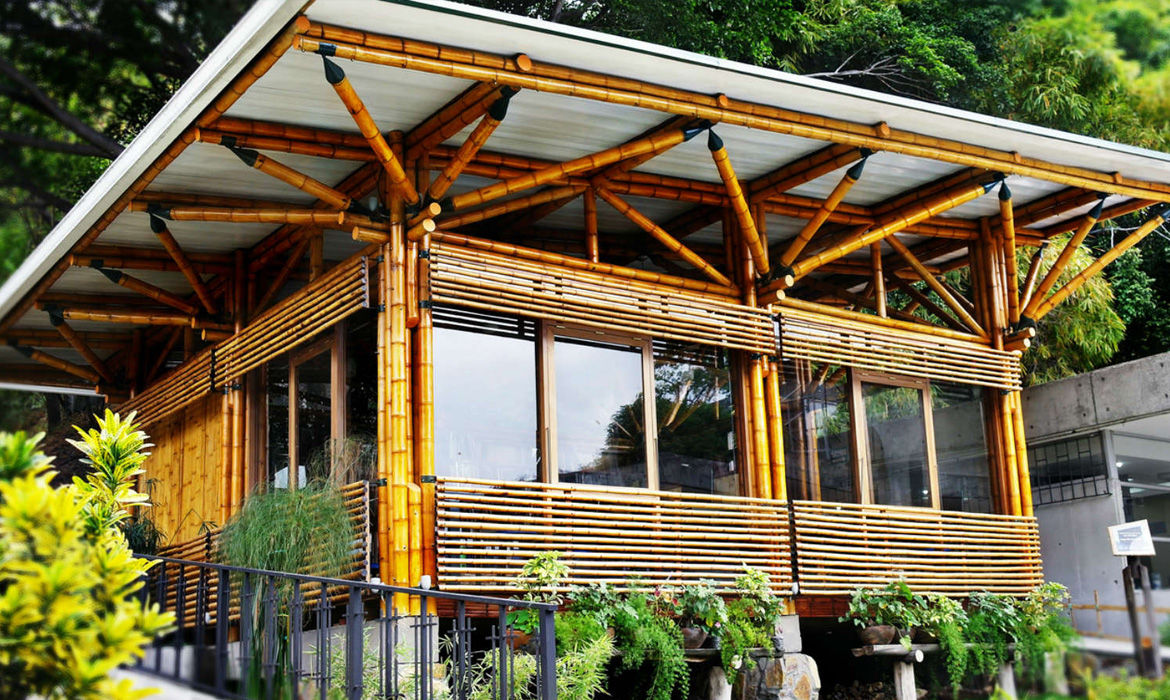 Sustainable Architecture Bamboo